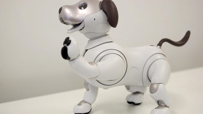 Sony's aibo, an autonomous robotic dog, holds up a paw and is photographed during a demonstration in Walnut Creek, Calif., on Tuesday, Sept. 11, 2018. (Anda Chu/Bay Area News Group/TNS)