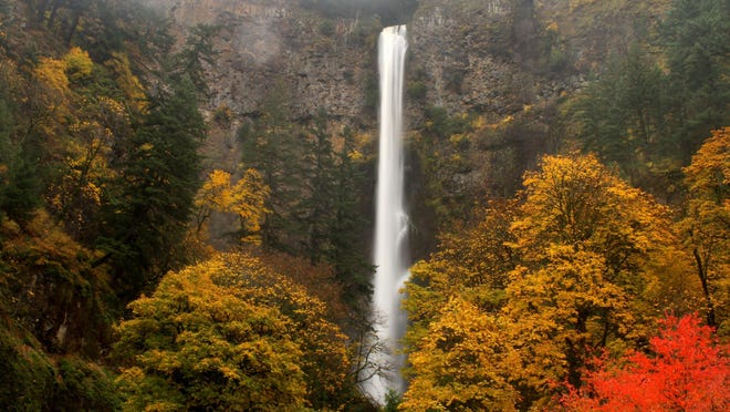 Multnomah Falls is opening with some major tweaks to the visiting experience.