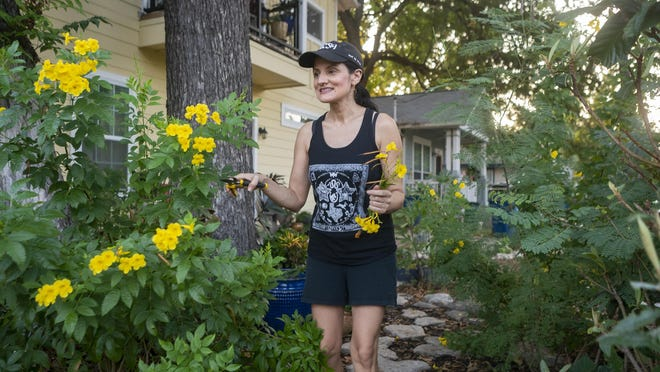 American-Statesman reporter Deborah Sengupta Stith prunes an esperanza bush on the side of her yard in late August. She planted the bush in 2018 around the same time she was diagnosed with an early form of breast cancer. Even in the midst of a brutal heat wave, the esperanza blooms brightly.