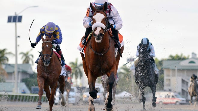In this March 28, 2020, image provided by Gulfstream Park, Tiz the Law, riddren by Manuel Franco, foreground, runs in the Florida Derby horse race at Gulfstream Park in Hallandale Beach, Fla. Tiz the Law looks every bit like the best 3-year-old in the world and is the Triple Crown favorite, so it'll take something spectacular from a watered-down field to prevent him from becoming the first New York-bred horse to win the Belmont in over 130 years and take a powerful stride toward the Kentucky Derby.