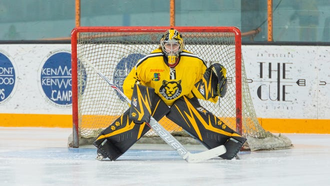 Goaltender Victoria Hanson, of Stoughton, led the Boston Pride to the title game of the National Women's Hockey League before the coronavirus ended the season prematurely. Here Hanson is in action in a Dec. 28, 2019 game at the Connecticut Whale.