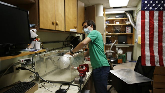 Albert Nazeeri demonstrates his system for disinfecting N95 respirators on May 27, 2020, in Los Angeles. The Caltech student was asked to watch over a geobiology lab once the coronavirus shutdown hit, and he used the equipment to create a way to reuse the masks.