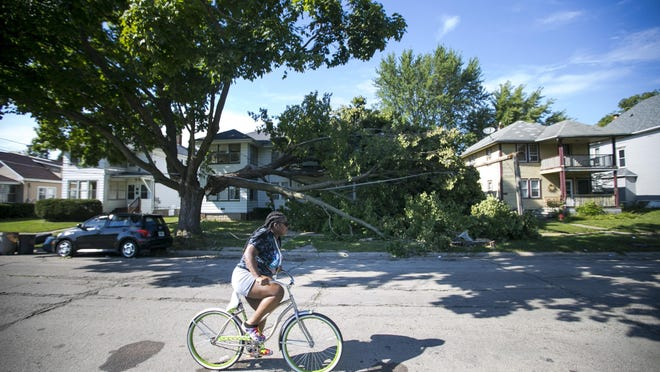 A bicyclist rides past a broken tree limb on Thursday in the 1600 block of Sixth Avenue in Rockford. The tree was damaged in Monday's powerful storm, which produced at least 15 tornadoes in Illinois, including two in Rockford.