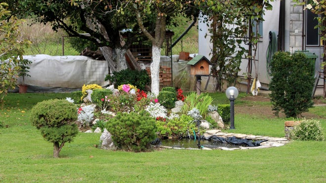 A well-decorated pond can bring great tranquility and beauty to your yard.
