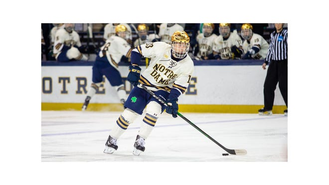 St. Mary Catholic Central graduate Colin Theisen is an alternate captain for the Notre Dame hockey team this season.