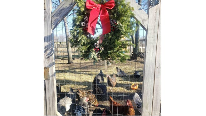 Michelle Feaganes said she decorated more than usual this year. Here's a view of a wreath on her farm.