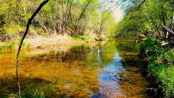 The Kisva Trail follows the course of Oak Creek as it winds through Red Rock State Park in Sedona.