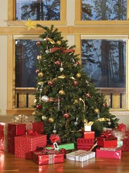 leaning_christmas_tree_FAN2021189.jpg