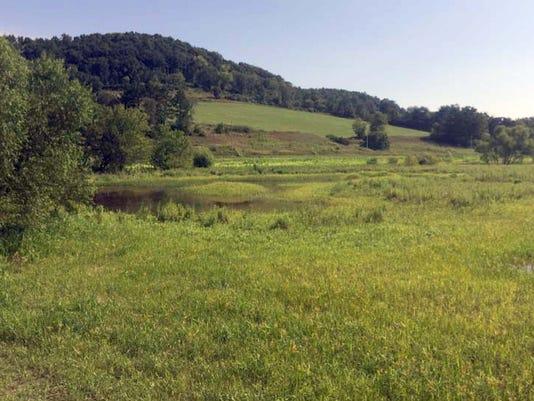 WSF 0602 USDA rotational grazing 1