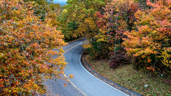 Fall color brightens the drive up Grandfather Mountain's main road, as pictured from atop the park's Sphinx Rock boulder.