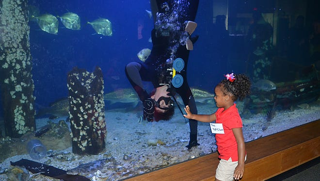 James Hill, aquarist at Mississippi Museum of Natural Science gets a high five from Nia McClure form Utica after he finishes feeding the various species of fish inside the 100,000-gallon aquarium.