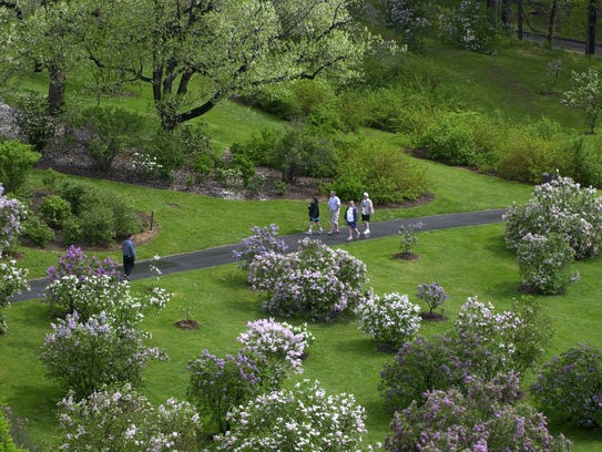 """an overview of highland park by frederick law olmsted """"what artist, so noble, has often been thought, as he, who with far-reaching  conception of beauty and designing power, sketches the outline, writes the colors ,."""
