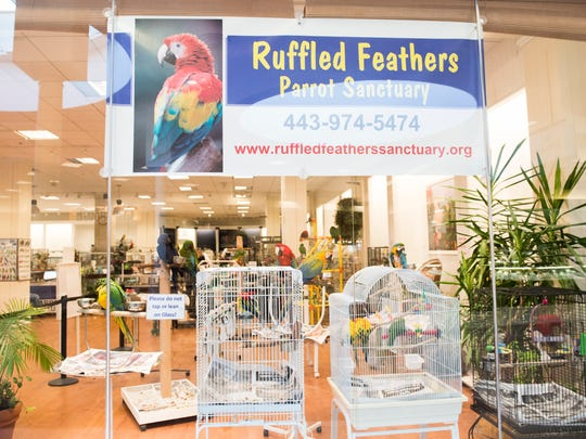 In this file photo from March 12, 2018, Ruffled Feathers Parrot Rescue and Sanctuary in the North Hanover Mall is pictured.