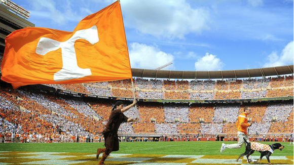 The Neyland Stadium playing surface was voted tops