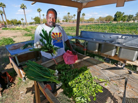 In this Tuesday, Feb. 7, 2017 photo, Tareke Tekie, originally from Eritrea, washes freshly picked items from his garden at a 15-acre lot of public gardens in Phoenix. The sprawling urban garden on a vacant lot where Phoenix residents have grown everything from melons to okra closed Friday, Feb. 10 after the gardeners were mysteriously ordered out as a federal agency reassumes ownership of the land, stupefying and angering gardeners who called their eviction a classic case of government dysfunction.