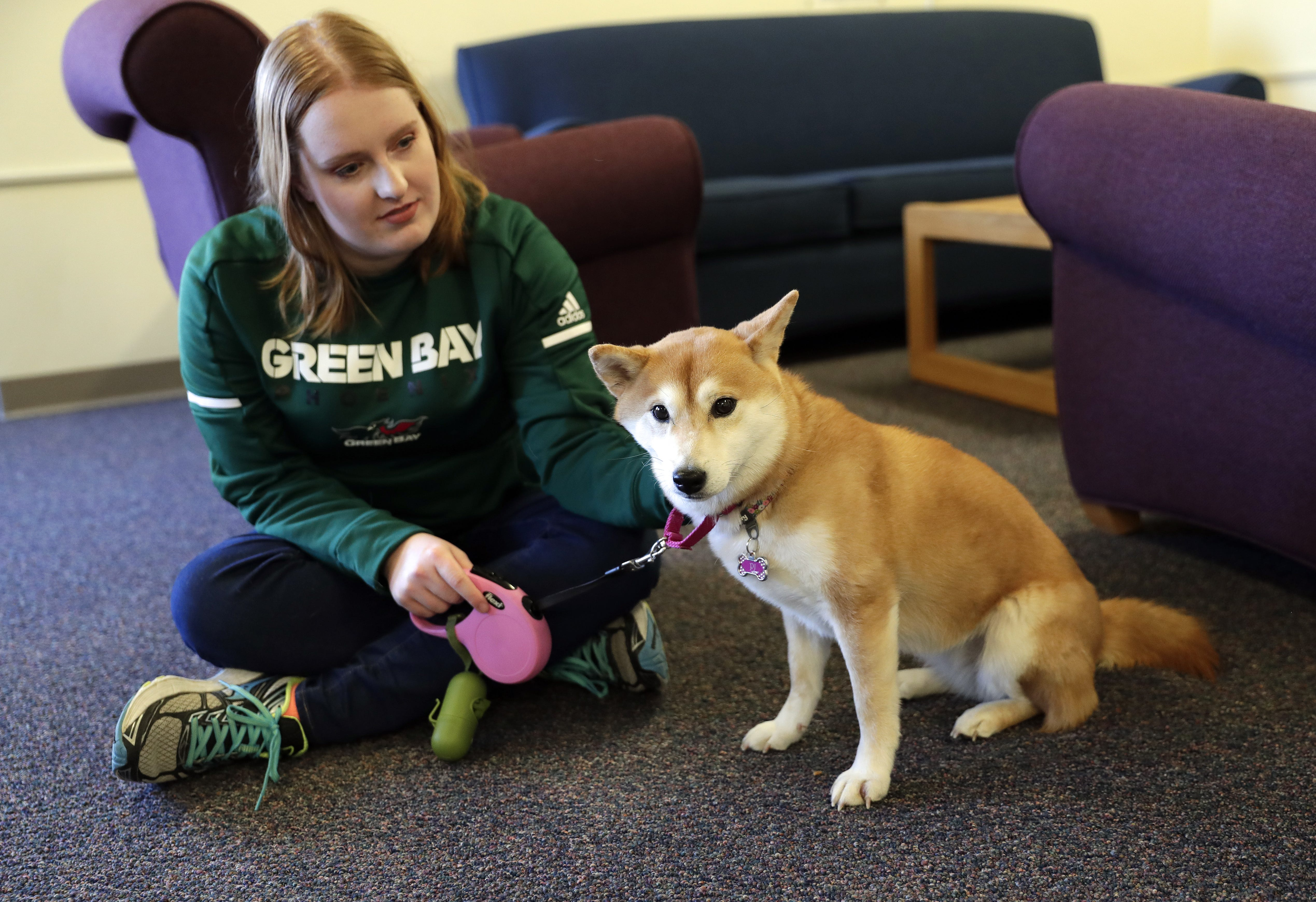 Image of: Therapy Emotional Support Main Green Bay Press Gazette Colleges See Growing Demand For Emotional Support Animals On Campus
