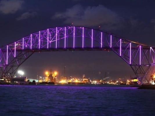 ipad_harborbridge_purple_12741128_ver1.0_640_480.jpg