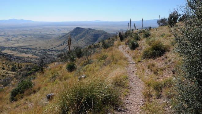 Yaqui Ridge along Arizona National Scenic Trail.