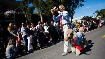 Putting on the dog: Costumed pets parade in downtown Naples