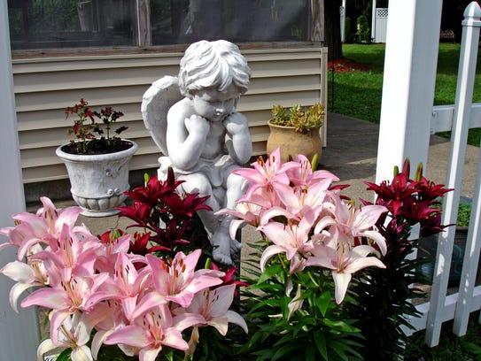 Greg Baker worked tirelessly on his home garden.