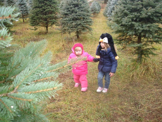 With nearly 100 choose-and-cut Christmas tree farms