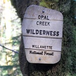 Timeline of events: The fight for Opal Creek