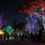 Where to see holiday lights in Phoenix this season: Glendale Glitters, Luminarias, Mesa Temple, Zoolights