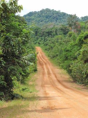 The Pan-American Highway in Guyana's Rupununi region is not for those  in a hurry. The pavement ends not far outside the capital, Georgetown.