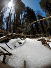 Ice and snow likely played a role in the deaths of two hikers in Sequoia National park.