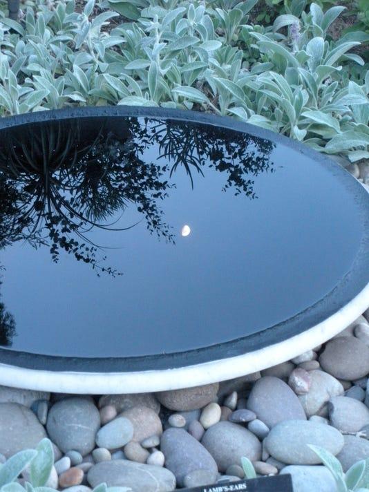-reflected moon.JPG_20100827.jpg