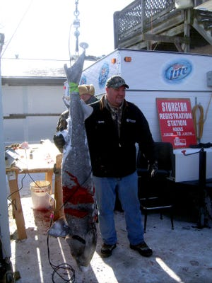Gregory Harm of Menomonie speared the largest sturgeon of the season on opening day. The fish weighed 127.3 pounds and measures 76.4 inches.