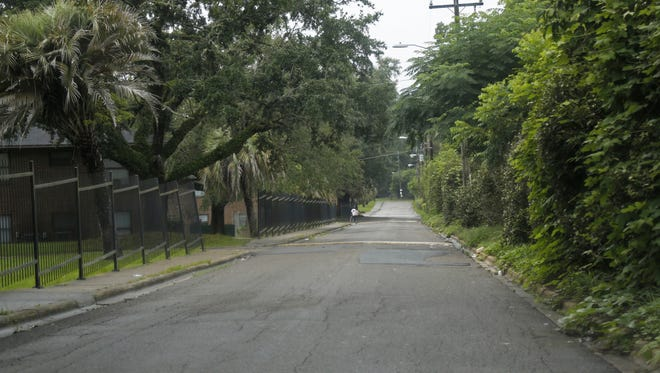 An access road to Leon Arms Apartments on Holton Street in Tallahassee.