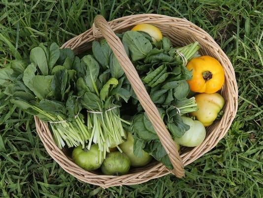 ASB 0817 Organic Farming Presto ID: 87242932