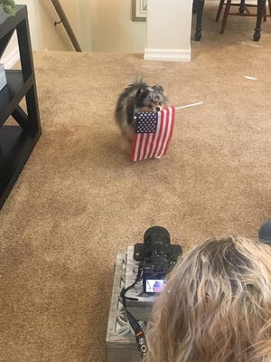 Behind the scenes with the Fulton Homes' dog commercial.