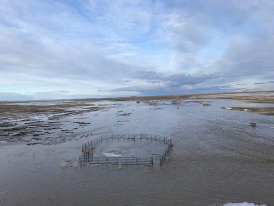 Snow runoff caused flooding at the Circle S Ranch 5