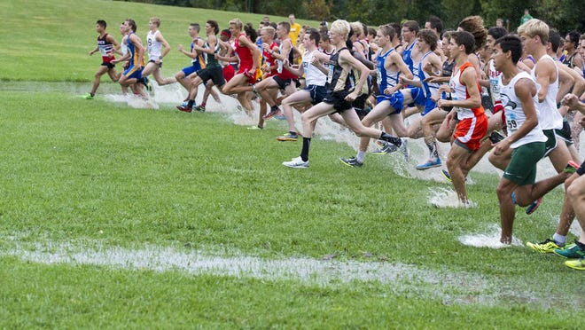 Who can catch Carmel in this year's cross country field?