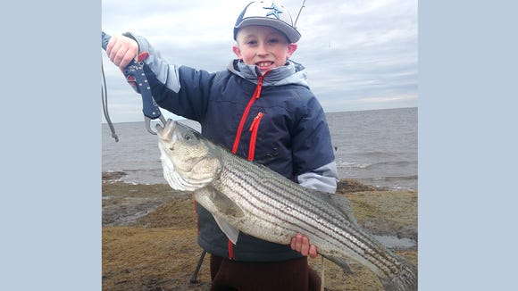 Eight-year-old Dylan O'Connell holds the 29-inch striped bass he caught at Graveling Point on March 5. He was fishing with his dad, Greg, and the fish earned him a $100 gift certificate to Scott's Bait & Tackle for the first keeper striped bass of the season caught at Graveling Point.