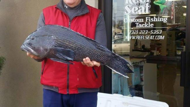 Steve Singler, Philadelphia, with the new N.J. state record black sea bass. The fish is 9 pounds and was weighed at the Reel Seat.