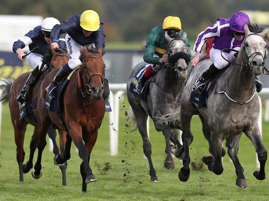 Capri, right, ridden by Ryan Moore comes in to win The St Leger event, during day four of the St. Leger Festival at Doncaster Racecourse, England, Saturday Sept. 16, 2017.  Moore rode Capri to victory in the St Leger at Doncaster for trainer Aidan O'Brien to win the final British classic of the flat-racing season. (Martin Rickett/PA via AP)