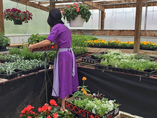 Gingerich Greenhouse, E3555 Thomas Rd., La Valle, sells