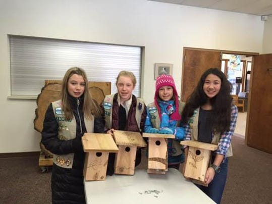 bluebird_boxes_with_troop