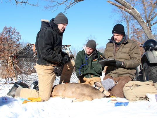 636236337113929471-Deer-research-1.jpg
