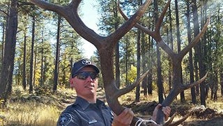 A large set of antlers with part of the animal's skull still attached was seized during an arrest for illegal possession of a set of trophy antlers.