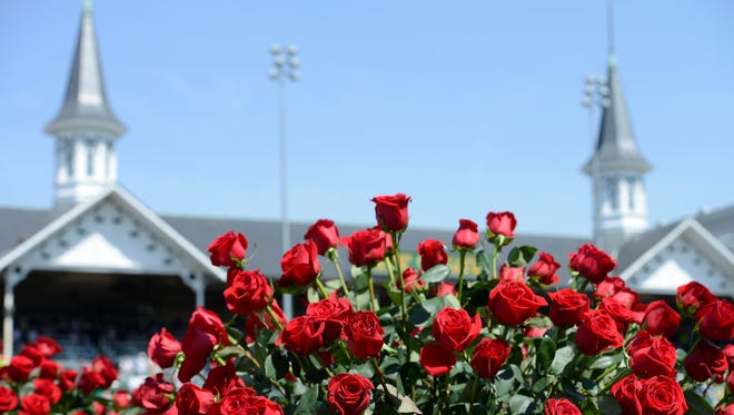 May 3, 2014; Louisville, KY, USA; A general view of roses in the infield before the 2014 Kentucky Derby at Churchill Downs. Mandatory Credit: Jamie Rhodes-USA TODAY Sports