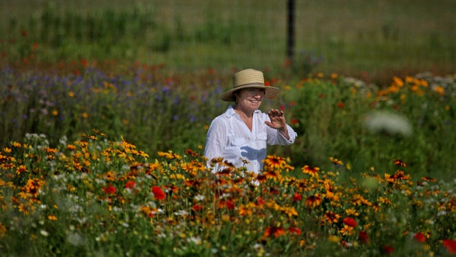 Kathy Tourje started planting her wildflower beds several years ago and now runs Pebble Hall Wildflower Farm in Weyers Cave with the help of her husband, Tom, where customers can cut their own wildflowers.