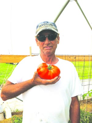 Mike Osborne has the knack for growing good vegetables at Osborne Farms near St. John. His wife, Jill, is good at selling them, and the family is hard at working with asparagus and romaine lettuce ready to market. Tomatoes are coming on strong and will be ready in two weeks.