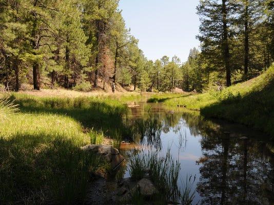 Arizona Trail Passage 28