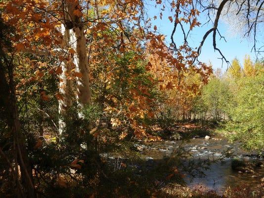 Sedona fall colors