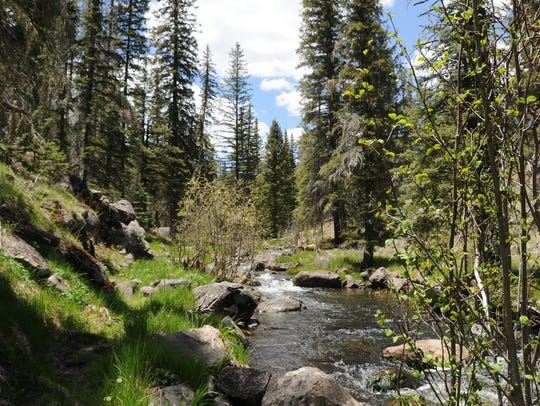 The Thompson Trail follows the West Fork of the Black