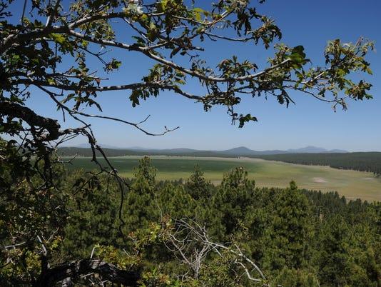 Woody Mountain hike 2